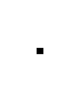 Dėlionės (puzzle)
